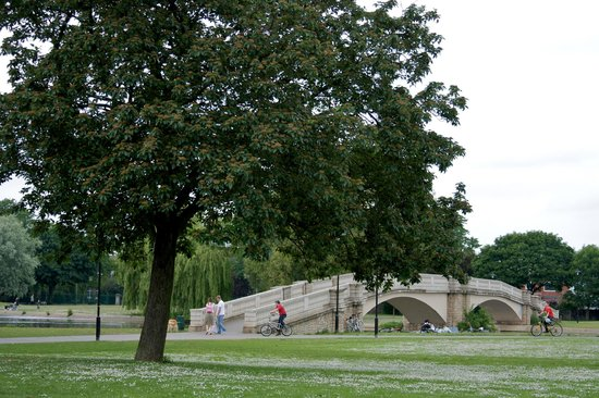 East Park: The bridge