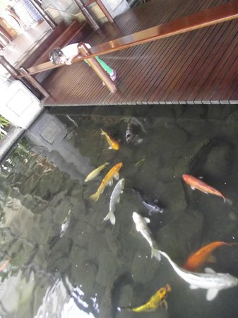 Sands Suites Resort & Spa: the fish pond bridge