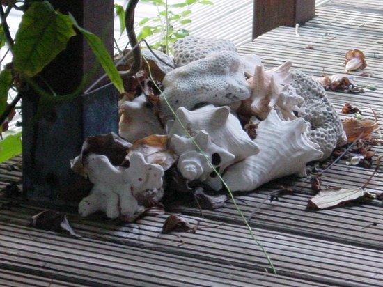 Bamboo Bali Bonaire - Boutique Resort: nette kleine Details