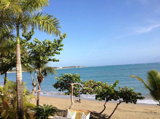 Beach Palace Cabarete: View from condo balcony