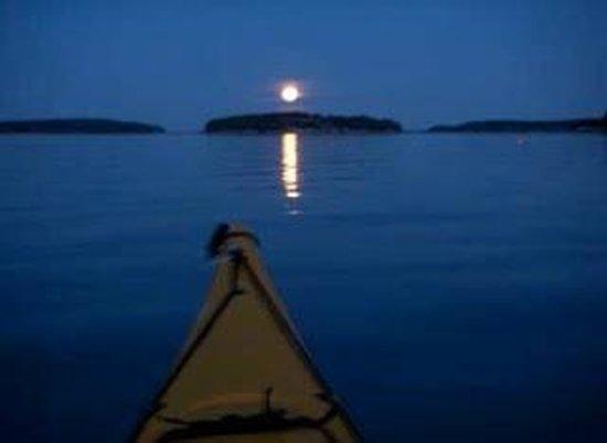Kayak Marco: Moonlight Kayak Experiences