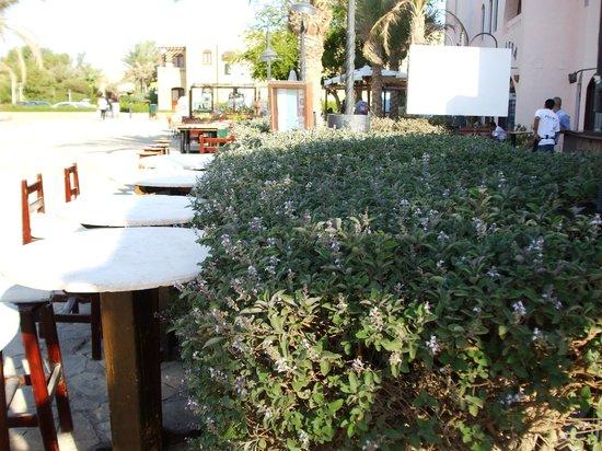 Jobo's Sports Bar & Restaurant : Tall stools facing the main square