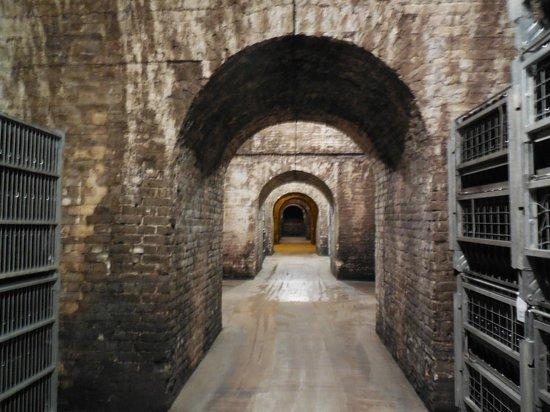 De Castellane : cellars