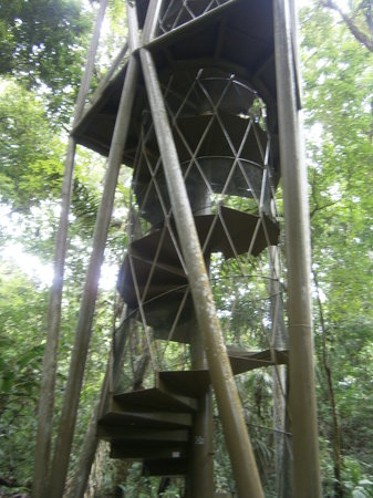 Panama Rainforest Discovery Center: Stairs made of recycled material from the Panama Canal bridge