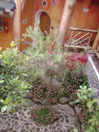 La Casa Sol Otavalo: Um do muitos pátios internos ajardinados do hotel