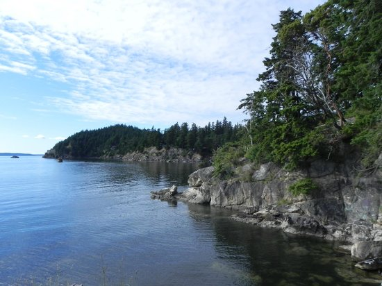 Larrabee State Park: Viewpoint