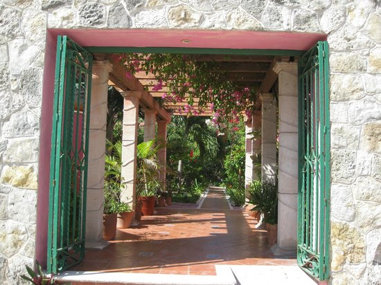 Cabanas Maria Del Mar : Lush gardens lead to the rooms