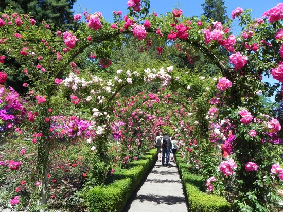 Garden View Picture Of Butchart Gardens Central Saanich Tripadvisor