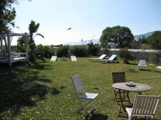 Cortijo El Pozuelo: Garden