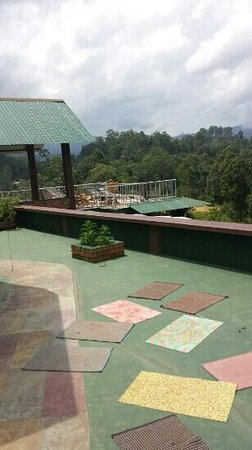Hilltop Guest House: roof