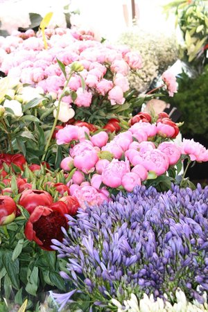 Les Petits Farcis : Beautiful flowers in the market