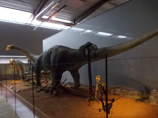 Musee des Dinosaures 'Dinosauria': des dinosaures