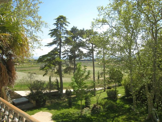 Chateau Juvenal : The view from the balcony in Raisin