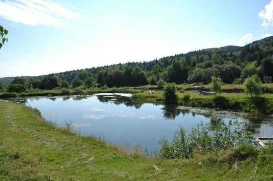 Pension Poiana Izvorului: The lake