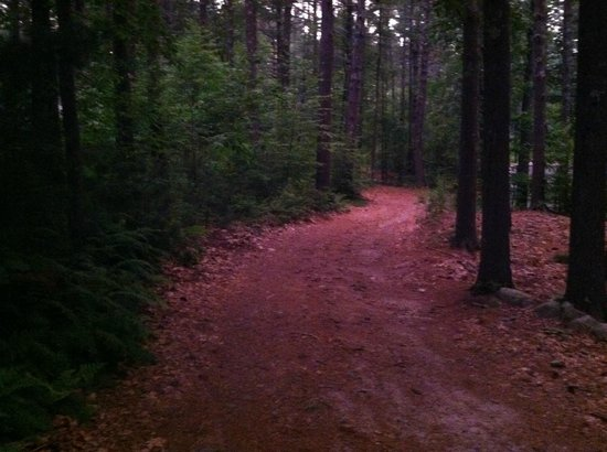Whispering Pines Campground: walking to site