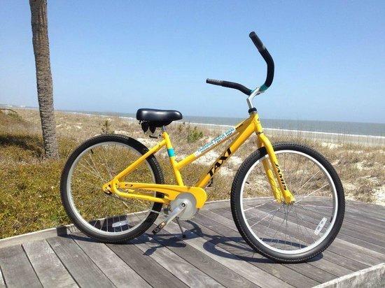 Paradise Beach Bikes