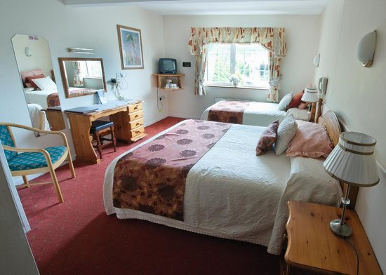 Slieve Bloom Manor Guesthouse: twin room