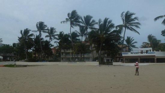 Kite Beach Hotel: view of hotel from beach