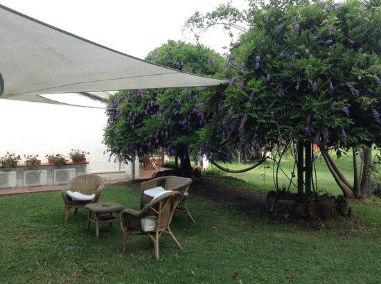 Pian dei Casali: garden