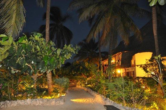 Casa Del Mar Hotel Jambiani: night view