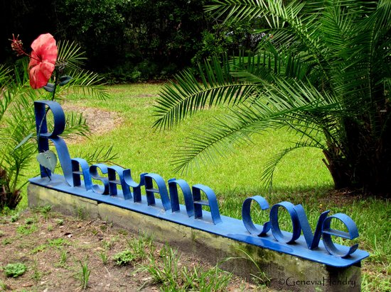 Rasayana Cove Ayurvedic Retreat: The colorful custom signage that lets you know you have arrived!