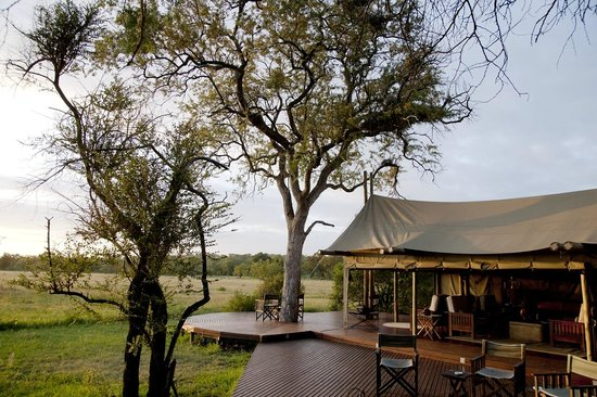 Rhino Walking Safaris at Plains Camp: Dining - lounge area