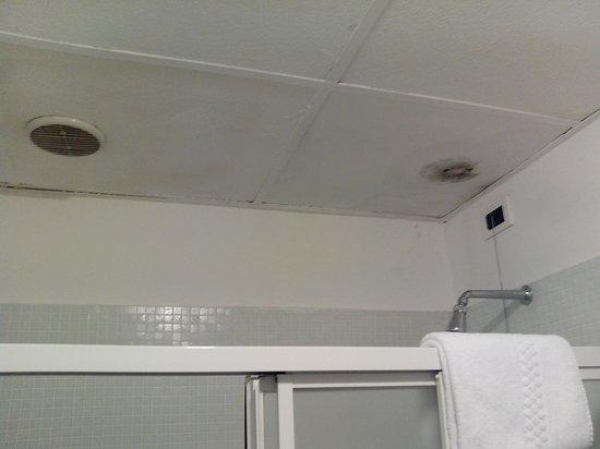 Hotel Wildner: Dusche mit Schimmelfleck