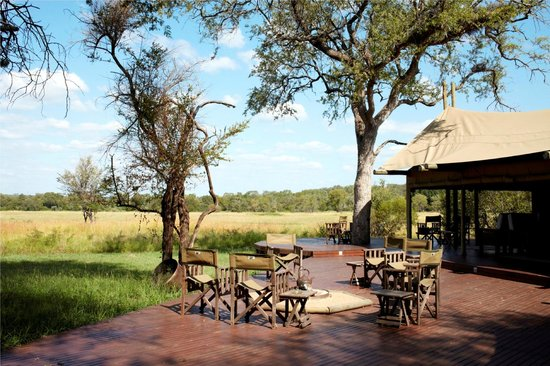 Rhino Walking Safaris at Plains Camp: View from dining area