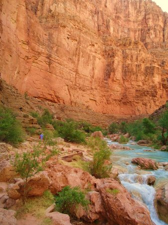 Colorado River & Trail Expeditions: Havasu Creek