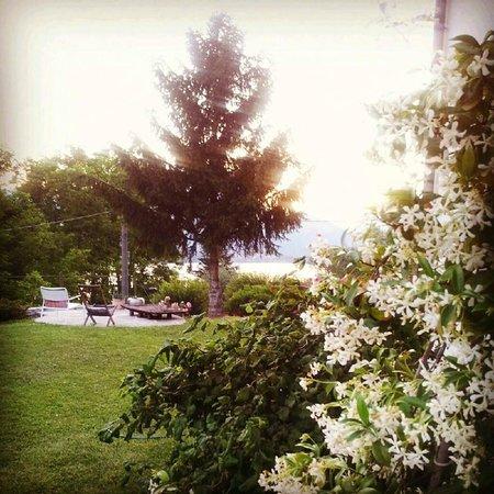 Il Bogno B&B: Garden View