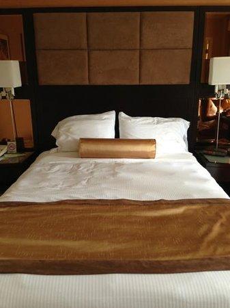 Excelsior Hotel-billede