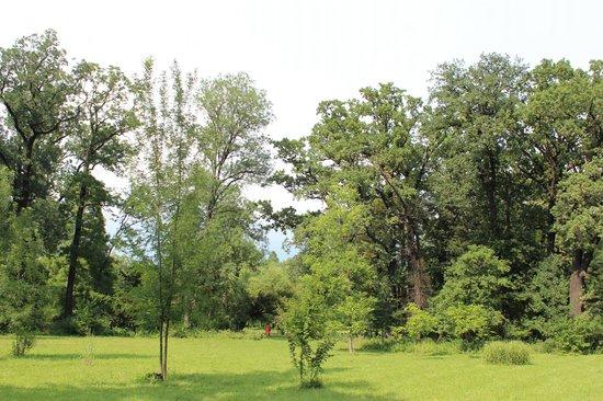 The Botanical Garden (Gradina Botanica): Botanical Garden Bucharest