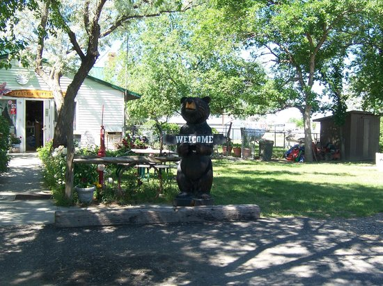 Grandview Campground & RV Park: Yard in front of Office
