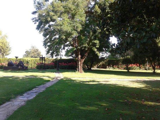 Hotel Cortijo El Esparragal : Zona del jardín donde se celebró la ceremonia matrimonial