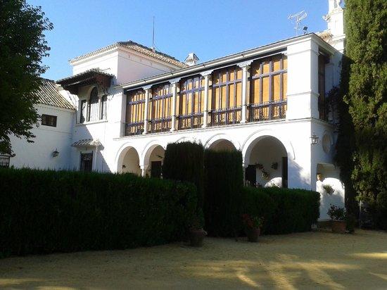 Hotel Cortijo El Esparragal : Patio donde se instaló la zona de baile
