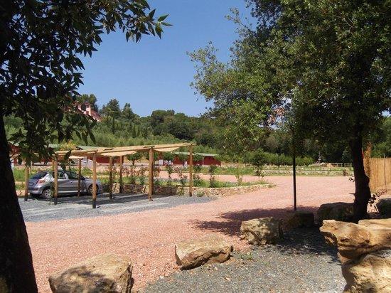 Agriturismo de Santis : Campingplatz