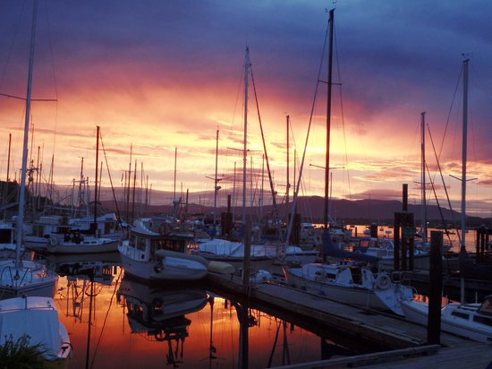 Cowichan Bay Guest Suites: Sunset