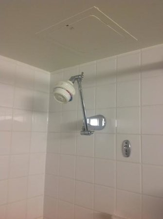 Delta Hotels by Marriott Calgary Downtown: Grungy shower head