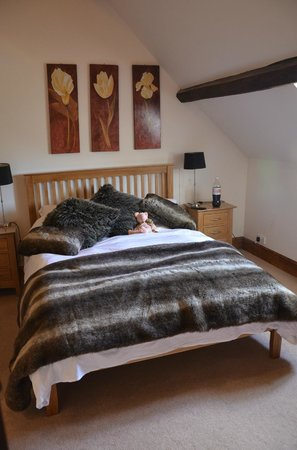 Rhandregynwen Hall Bed & Breakfast: Bedroom
