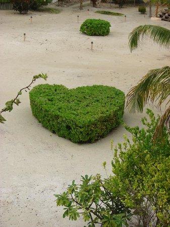La Perla Del Caribe: Lovely grounds!