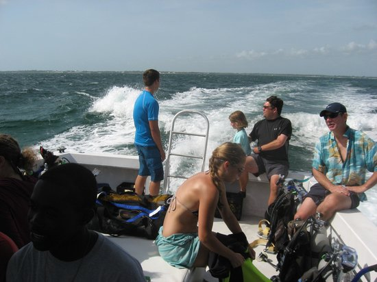 Dive Abaco! : A good group headed out to get wet