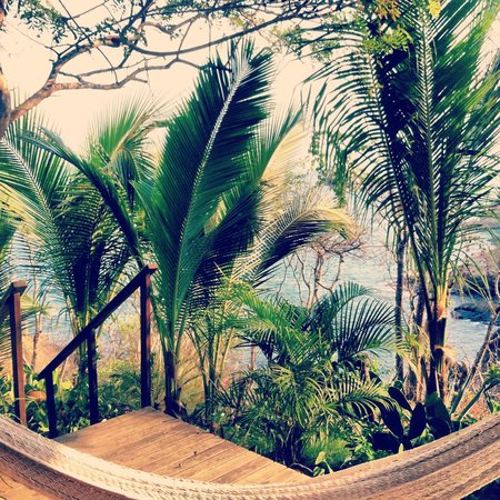Casa Sol Zipolite: View from our room/Hammock