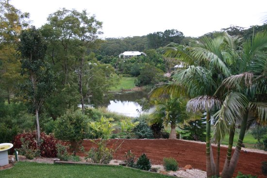Allara Homestead Bed & Breakfast: This is the veiw from the verandah.  You can see this veiw from just about anywhere during your