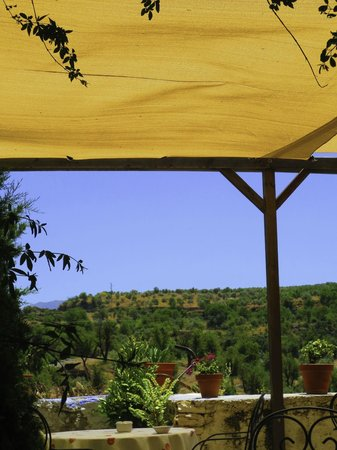 Hotel La Seguiriya: View of the patio out back