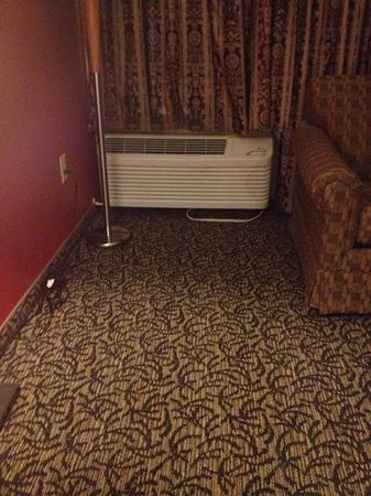Charleston Airport Hotel: room so hot had to move sofa away from unit tobtry to get room cool. dont stay on 8th floor!