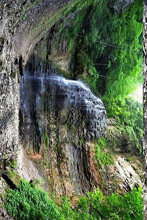 Waterfalls of Hamilton: Tiffany Falls