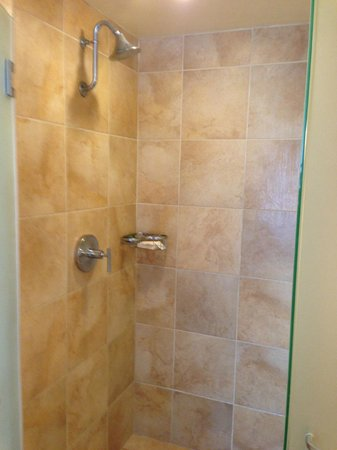 The Beverly Hilton: Separate shower is nice and big