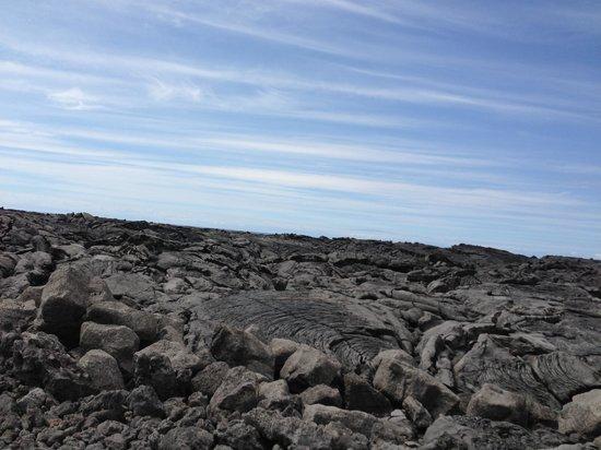 Kona Coast State Park: Lava along the road