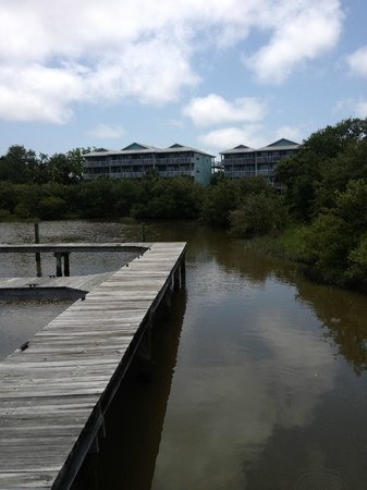 Natures Landing Condominium: View from Nature Walk behind the Condo Water Risen later
