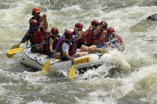 Timberline Tours: Our raft during the trip!
